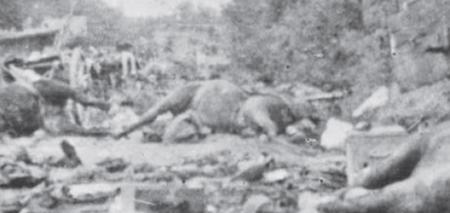 Poche de Falaise-Chambois, le Couloir de la mort